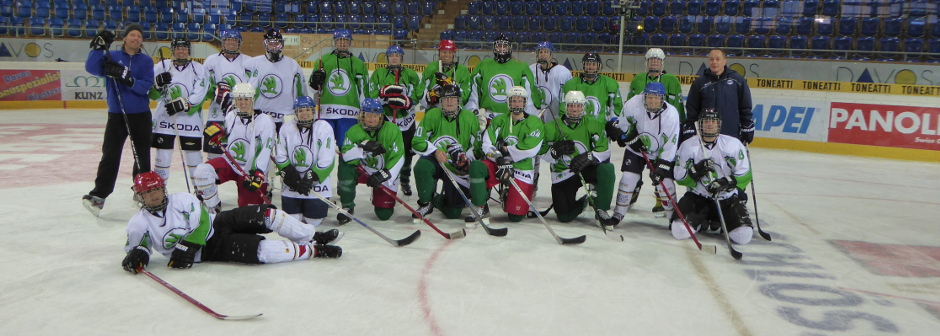corporate-hockey-event-car2